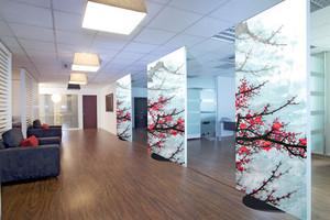Использование полотна в офисном помещении