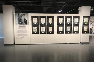 Передвижные стенды для Синара Арт (Sinara Art Gallery)